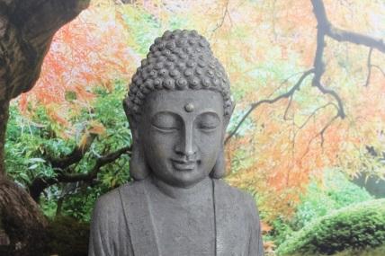 Buddha bij Zen Shiatsu